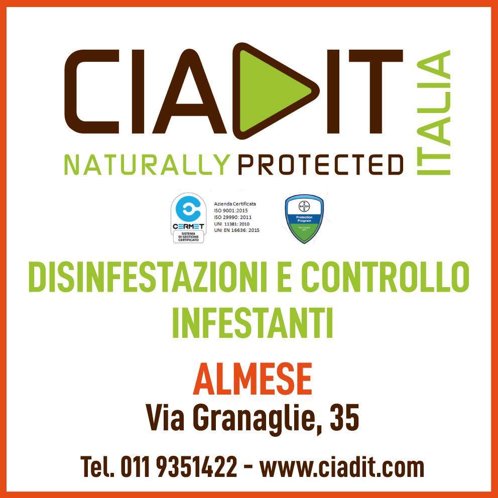 CIADIT 19